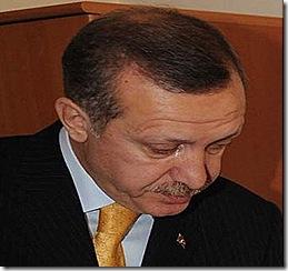 ardogan2872